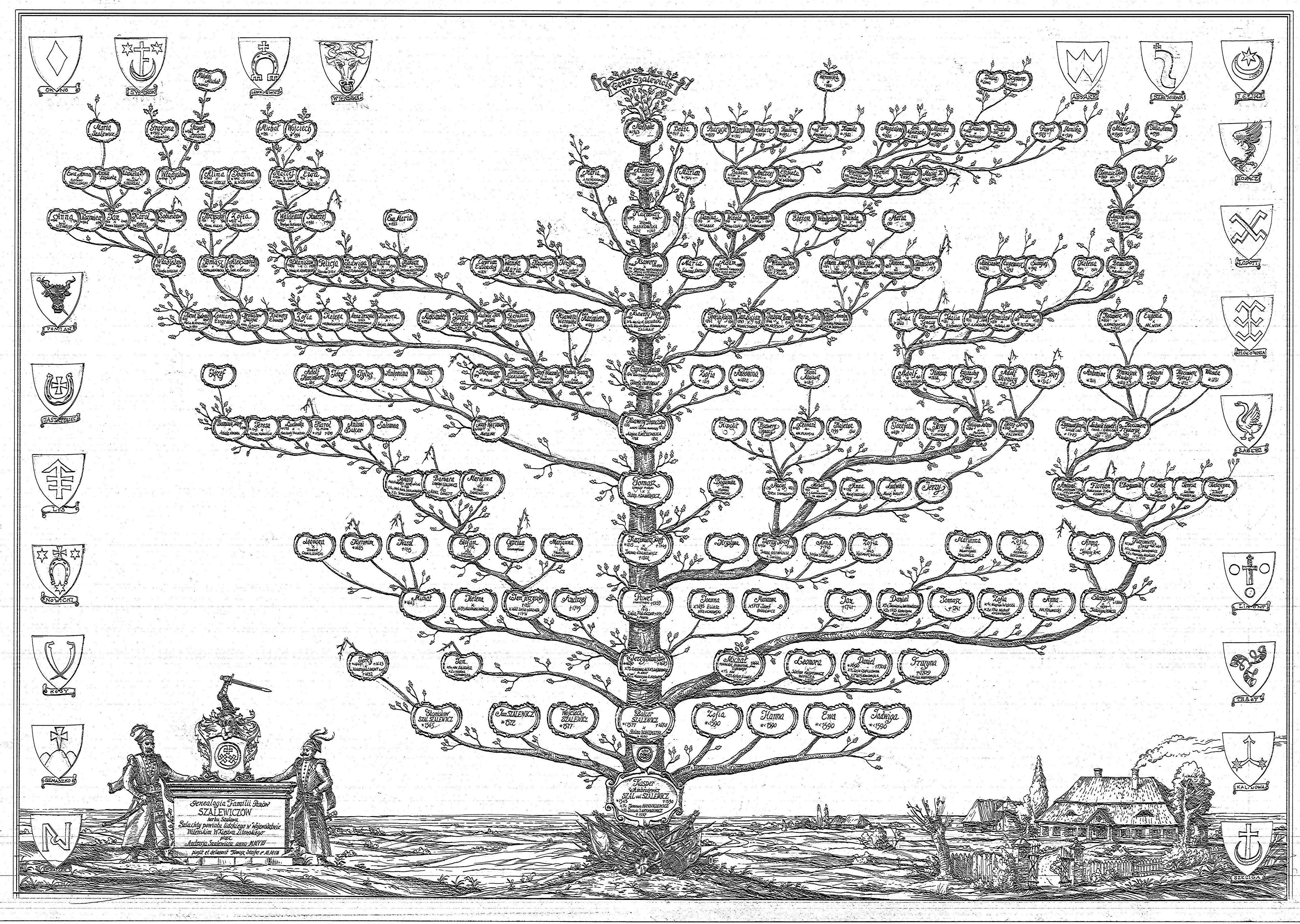 drzew genealogiczne